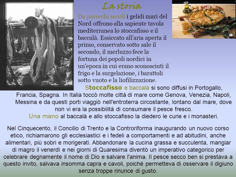 A Sant Omero la tradizione del baccalà risale agli anni precedenti l ultima guerra, quando un commerciante locale iniziò ad importarlo dalla Norvegia, organizzando feste e cene luculliane a base di questo pesce.