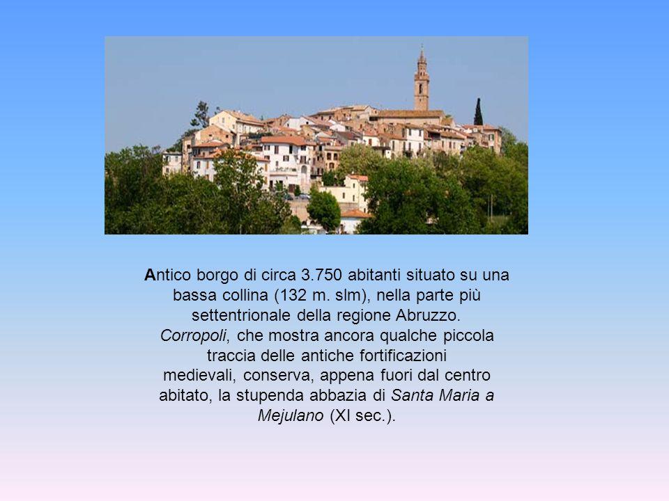 Ente Regione Abruzzo Amm.ne Comunale Corropoli Amm.ne Provinciale Teramo Palio Durante gli anni della sua brillante attività, l Associazione Palio delle Botti ha preso parte a diverse trasmissioni televisive portando a conoscenza del pubblico le proprie iniziative e la storia della città di Corropoli.