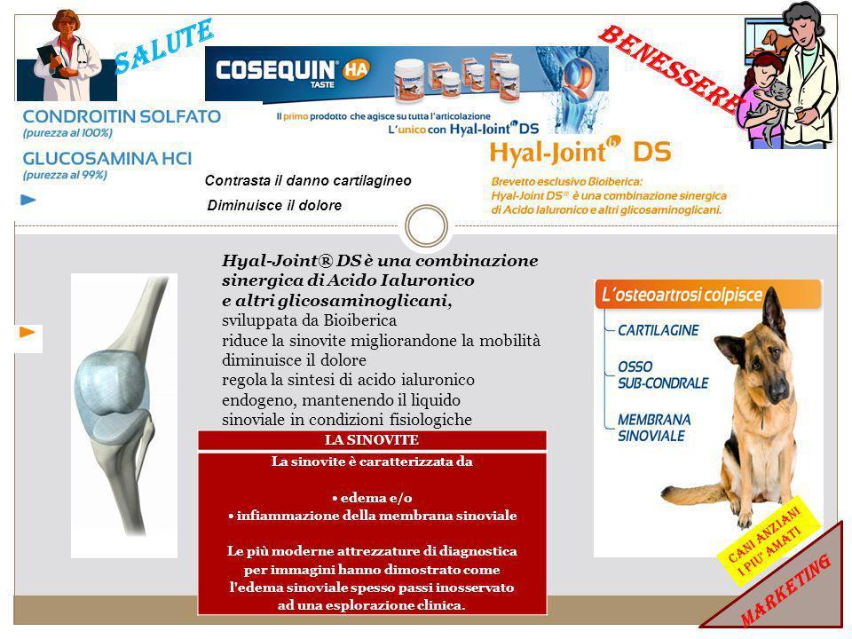 SALUTE BENESSERE Nutraceutici nel trattamento ristrutturante, immunomodulante, antinfiammatorio di: Dermatiti Atopiche, Dermatiti da Morso di Pulce, Dermatiti Allergiche, Seborrea.