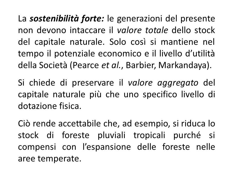 La sostenibilità forte: le generazioni del presente non devono intaccare il valore totale dello stock del capitale naturale. Solo così si mantiene nel