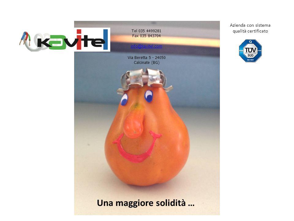 Una maggiore solidità … Tel 035 4499281 Fax 035 843704 info@kavitel.com Via Beretta 5 - 24050 Calcinate (BG) Azienda con sistema qualità certificato