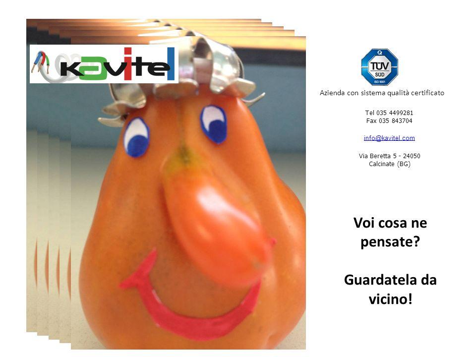 Tel 035 4499281 Fax 035 843704 info@kavitel.com Via Beretta 5 - 24050 Calcinate (BG) Azienda con sistema qualità certificato Voi cosa ne pensate.