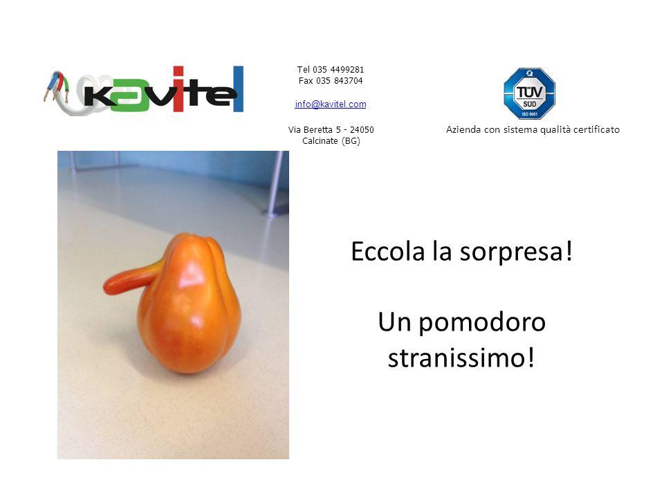 Tel 035 4499281 Fax 035 843704 info@kavitel.com Via Beretta 5 - 24050 Calcinate (BG) Azienda con sistema qualità certificato Me lo guardo bene.