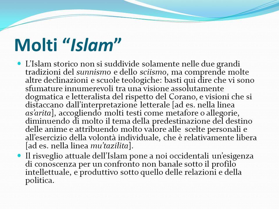Molti Islam LIslam storico non si suddivide solamente nelle due grandi tradizioni del sunnismo e dello sciismo, ma comprende molte altre declinazioni
