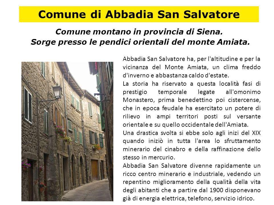 Comune di Abbadia San Salvatore Comune montano in provincia di Siena. Sorge presso le pendici orientali del monte Amiata. Abbadia San Salvatore ha, pe