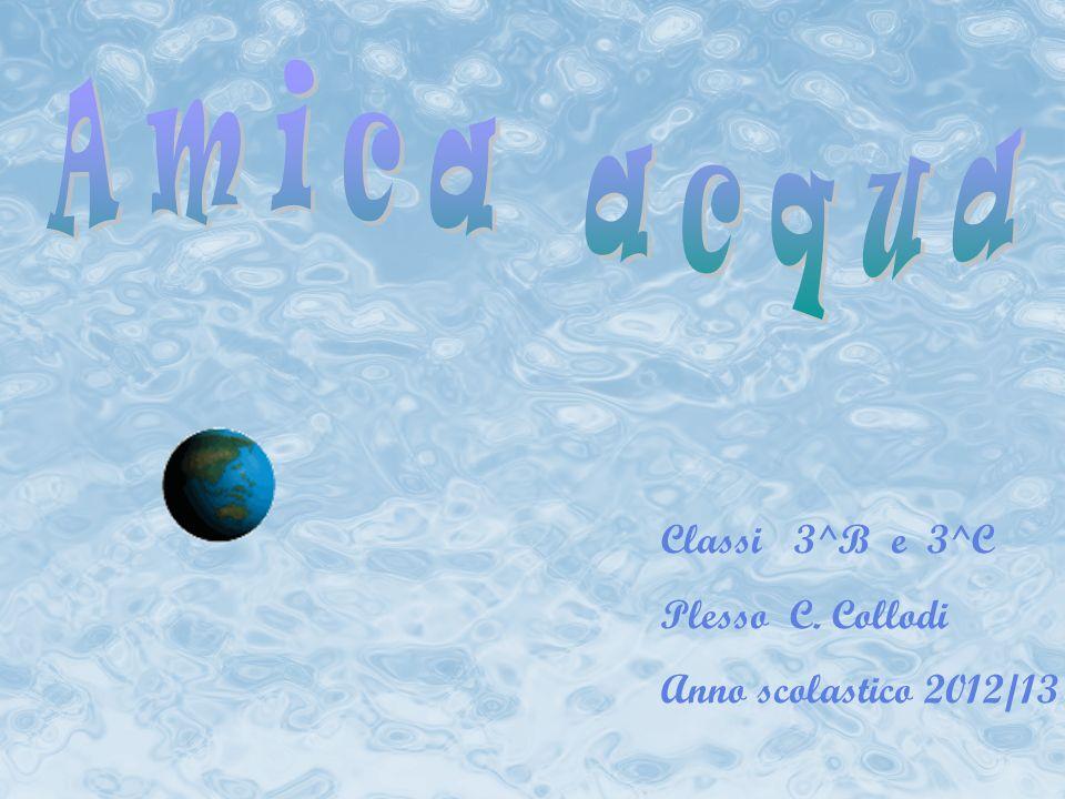 Classi 3^B e 3^C Plesso C. Collodi Anno scolastico 2012/13