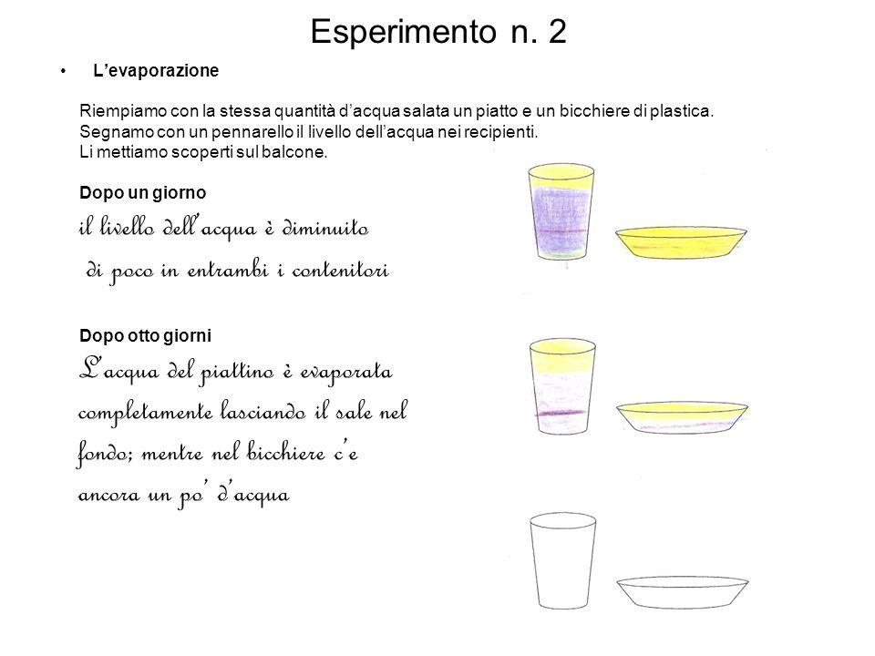 Esperimento n. 2 Levaporazione Riempiamo con la stessa quantità dacqua salata un piatto e un bicchiere di plastica. Segnamo con un pennarello il livel