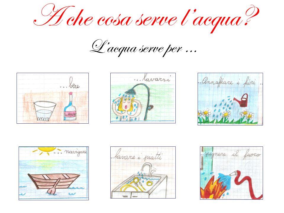 Lacqua e i cinque sensi I sensi ci dicono che: Lacqua non ha sapore, ma quella del mare è salata.