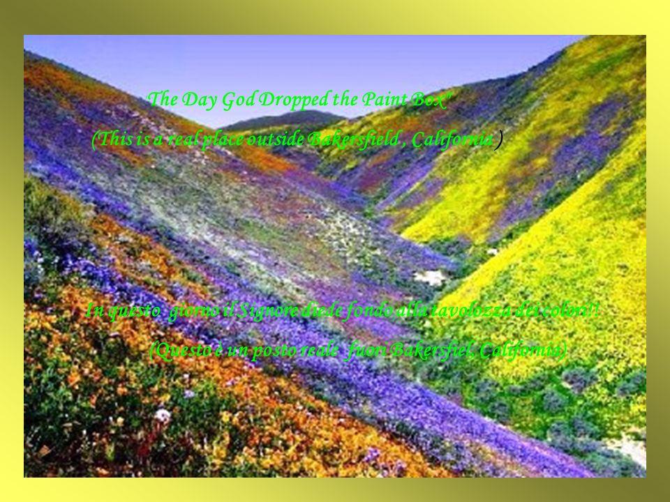 In questo giorno il Signore diede fondo alla tavolozza dei colori!.