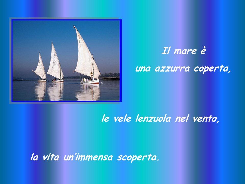 IL MARE Nicola Cinquetti