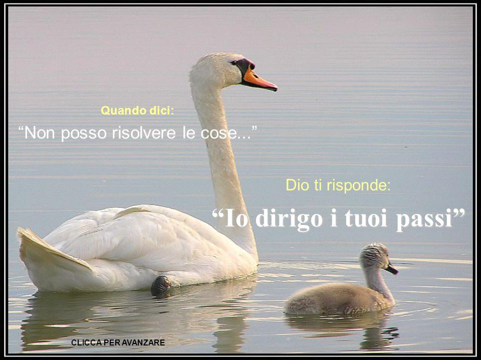 Quando dici: Non posso risolvere le cose...Dio ti risponde: Io dirigo i tuoi passi (cf.