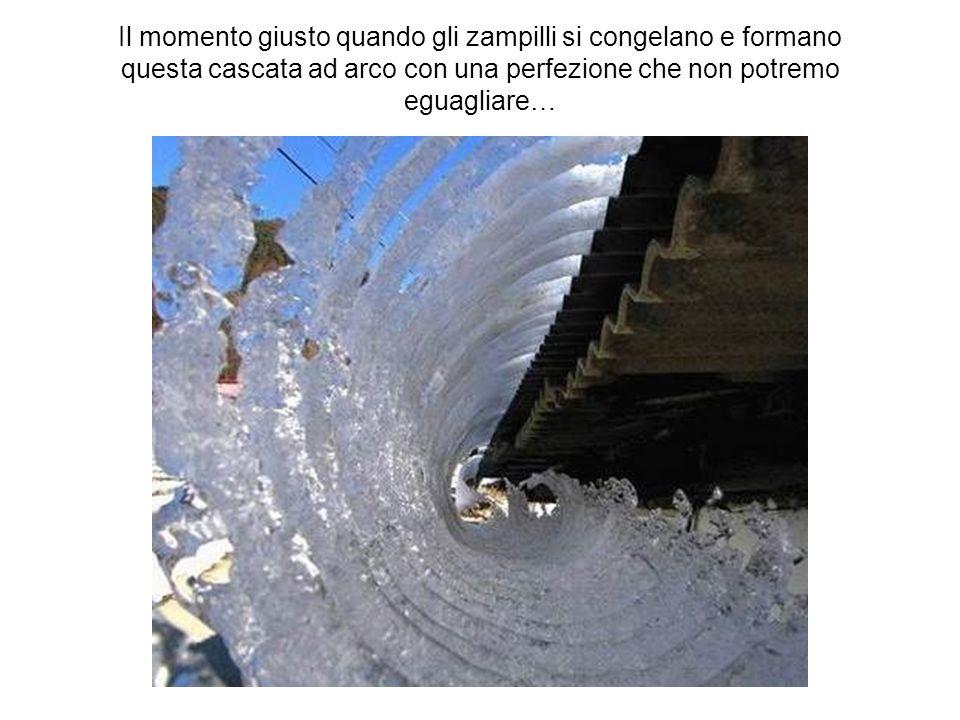 Il momento giusto quando gli zampilli si congelano e formano questa cascata ad arco con una perfezione che non potremo eguagliare…