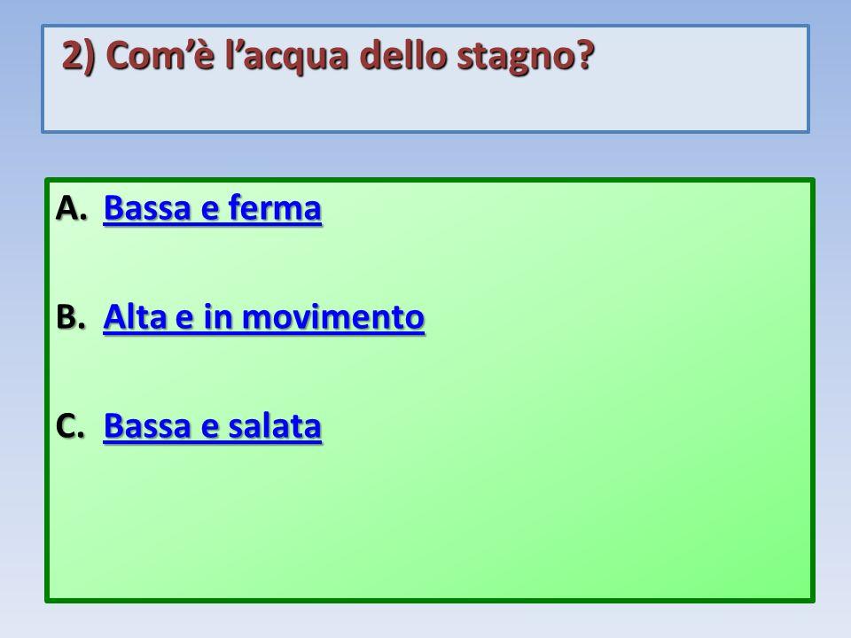 2) Comè lacqua dello stagno? 2) Comè lacqua dello stagno? A.Bassa e ferma Bassa e fermaBassa e ferma B.Alta e in movimento Alta e in movimentoAlta e i