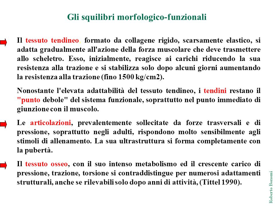 Occorre dedicare speciale attenzione alla piena funzionalità della colonna vertebrale.