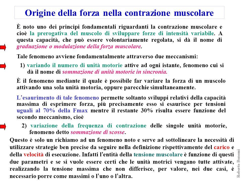 Origine della forza nella contrazione muscolare È noto uno dei principi fondamentali riguardanti la contrazione muscolare e cioè la prerogativa del mu