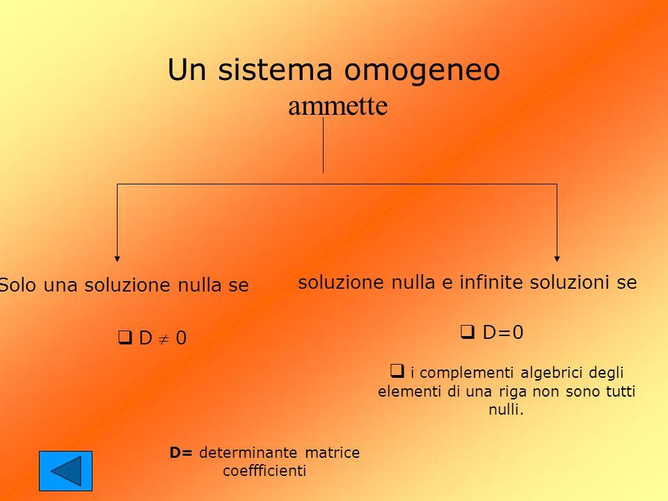 Un sistema omogeneo ammette Solo una soluzione nulla se soluzione nulla e infinite soluzioni se D=0 i complementi algebrici degli elementi di una riga