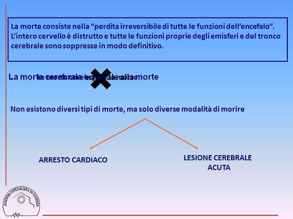 LESIONE CEREBRALE ACUTA COMA TERAPIA NEURO-RIANIMATORIA SUCCESSO: Prevenire o minimizzare il danno anossico- ischemico secondario.