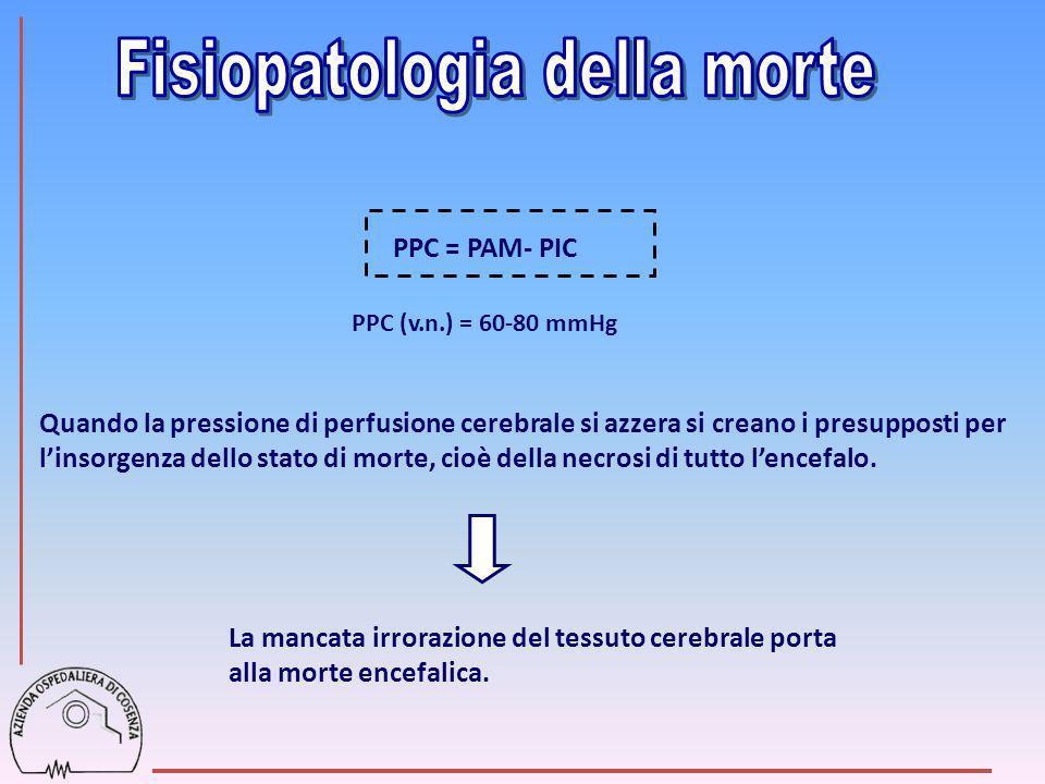 PPC = PAM- PIC PPC (v.n.) = 60-80 mmHg Quando la pressione di perfusione cerebrale si azzera si creano i presupposti per linsorgenza dello stato di mo