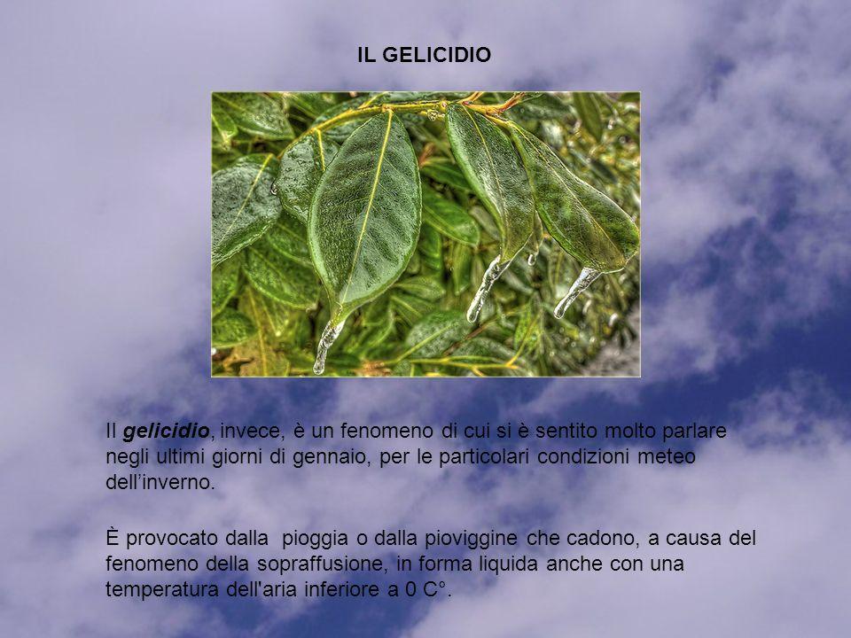 Il gelicidio, invece, è un fenomeno di cui si è sentito molto parlare negli ultimi giorni di gennaio, per le particolari condizioni meteo dellinverno.