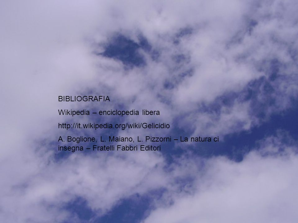 BIBLIOGRAFIA Wikipedia – enciclopedia libera http://it.wikipedia.org/wiki/Gelicidio A.