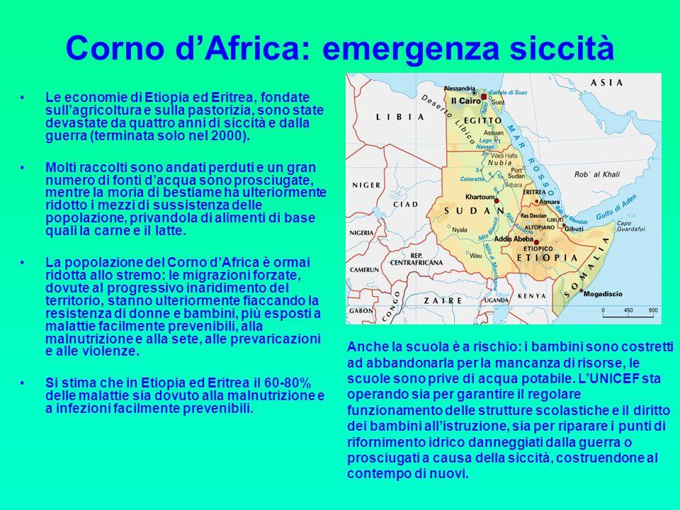 Corno dAfrica: emergenza siccità Le economie di Etiopia ed Eritrea, fondate sullagricoltura e sulla pastorizia, sono state devastate da quattro anni di siccità e dalla guerra (terminata solo nel 2000).