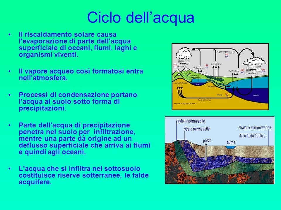 Ciclo dellacqua Il riscaldamento solare causa l evaporazione di parte dell acqua superficiale di oceani, fiumi, laghi e organismi viventi.