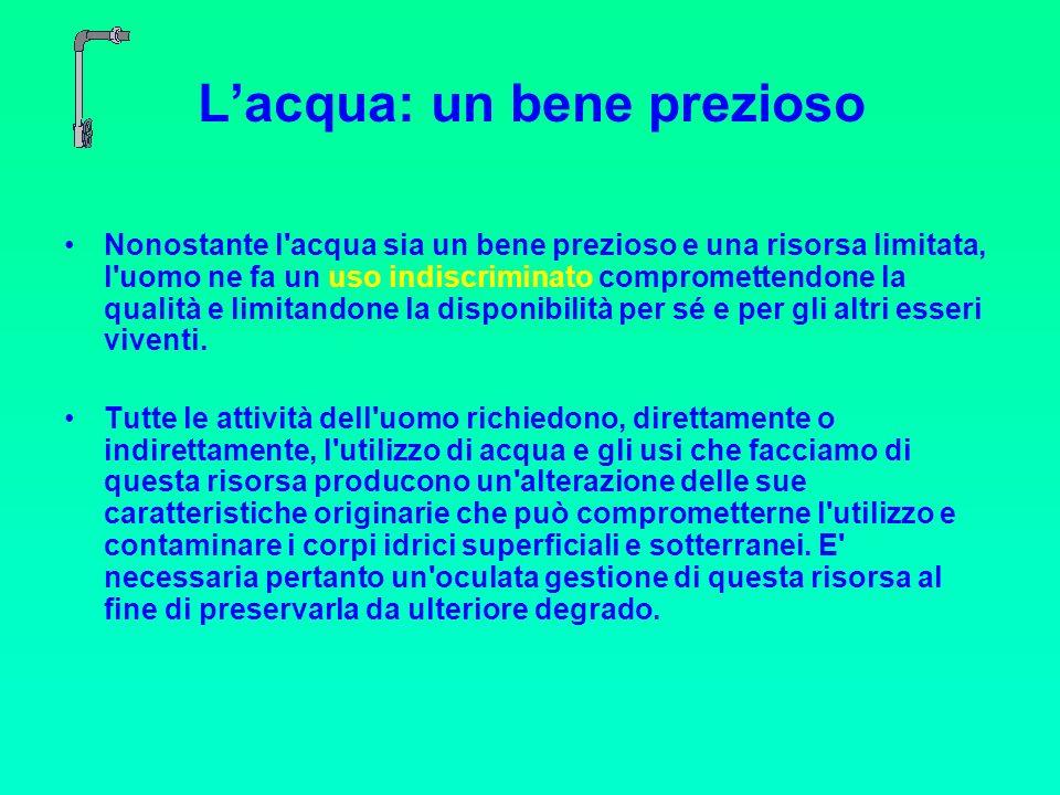 Lacqua: un bene prezioso Nonostante l acqua sia un bene prezioso e una risorsa limitata, l uomo ne fa un uso indiscriminato compromettendone la qualità e limitandone la disponibilità per sé e per gli altri esseri viventi.