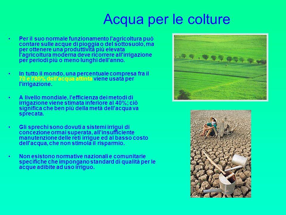 Acqua per le colture Per il suo normale funzionamento l agricoltura può contare sulle acque di pioggia o del sottosuolo, ma per ottenere una produttività più elevata l agricoltura moderna deve ricorrere all irrigazione per periodi più o meno lunghi dell anno.