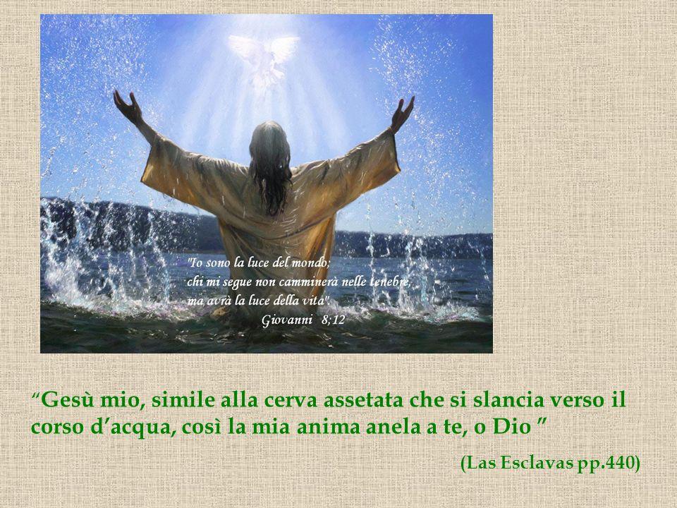 Gesù mio, simile alla cerva assetata che si slancia verso il corso dacqua, così la mia anima anela a te, o Dio (Las Esclavas pp.440)