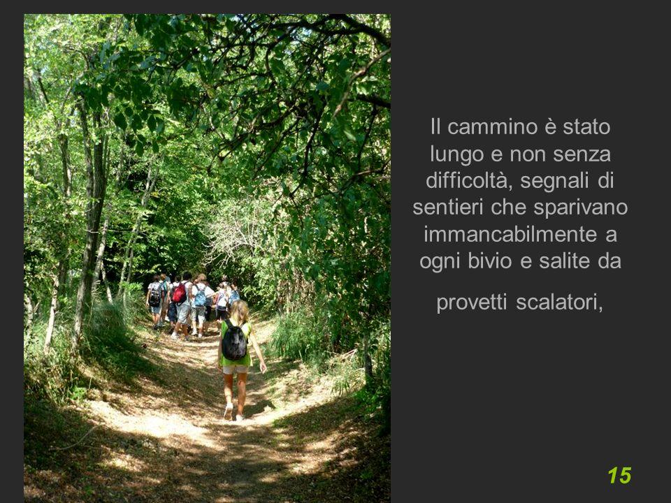 15 Il cammino è stato lungo e non senza difficoltà, segnali di sentieri che sparivano immancabilmente a ogni bivio e salite da provetti scalatori,