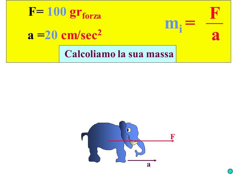 F= 100 gr forza a =20 cm/sec 2 Calcoliamo la sua massa F a m i = F a