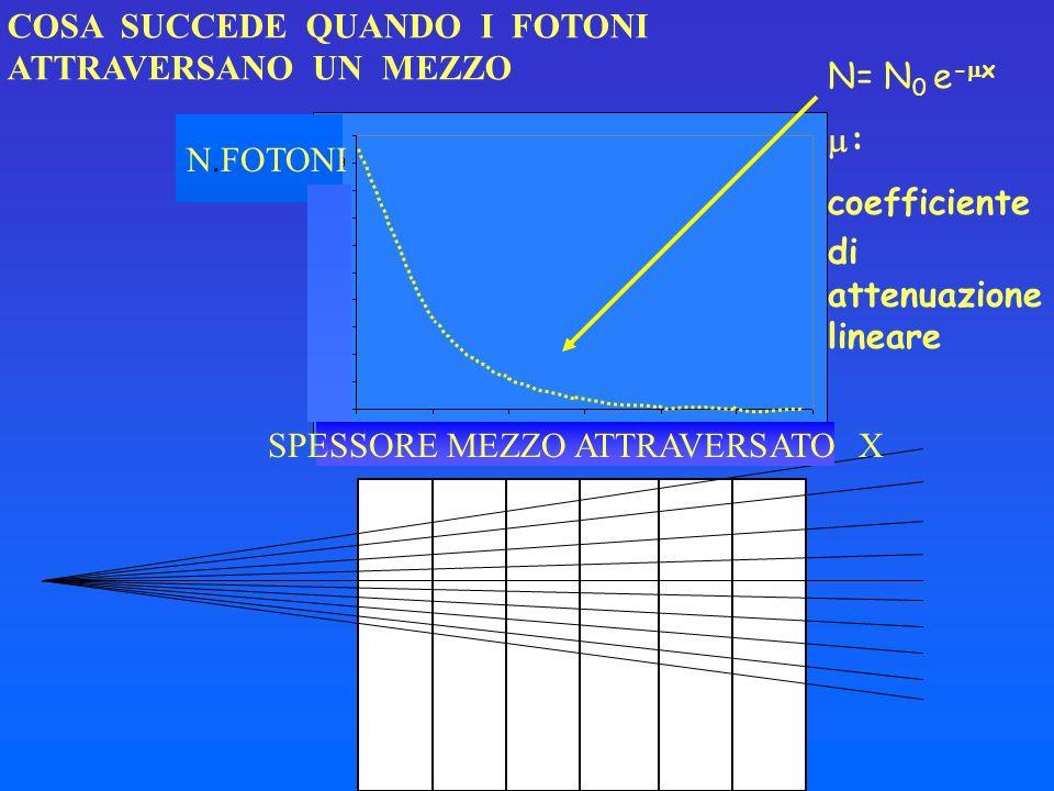 COSA SUCCEDE QUANDO I FOTONI ATTRAVERSANO UN MEZZO SPESSORE MEZZO ATTRAVERSATO X N.FOTONI N= N 0 e - x : coefficiente di attenuazione lineare