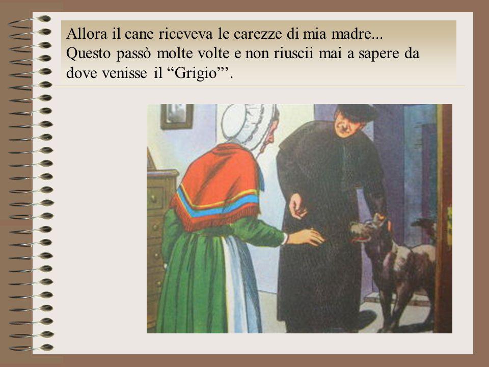 Allora il cane riceveva le carezze di mia madre... Questo passò molte volte e non riuscii mai a sapere da dove venisse il Grigio.