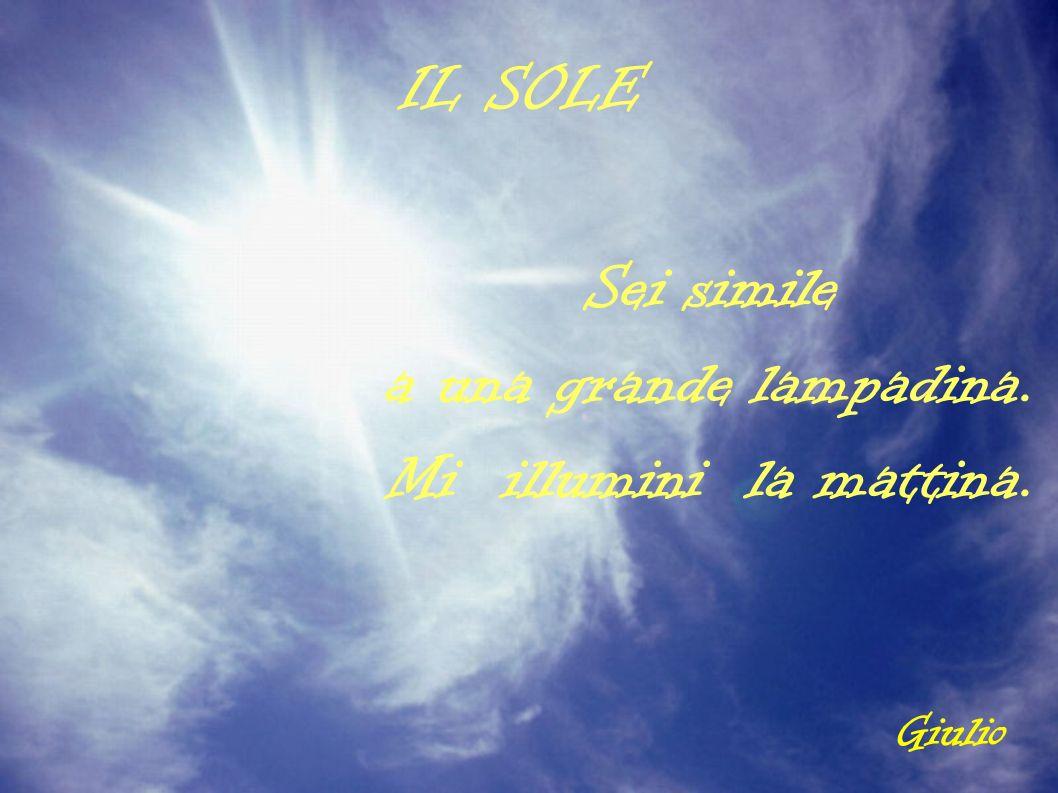 IL SOLE Sei simile a una grande lampadina. Mi illumini la mattina. Giulio