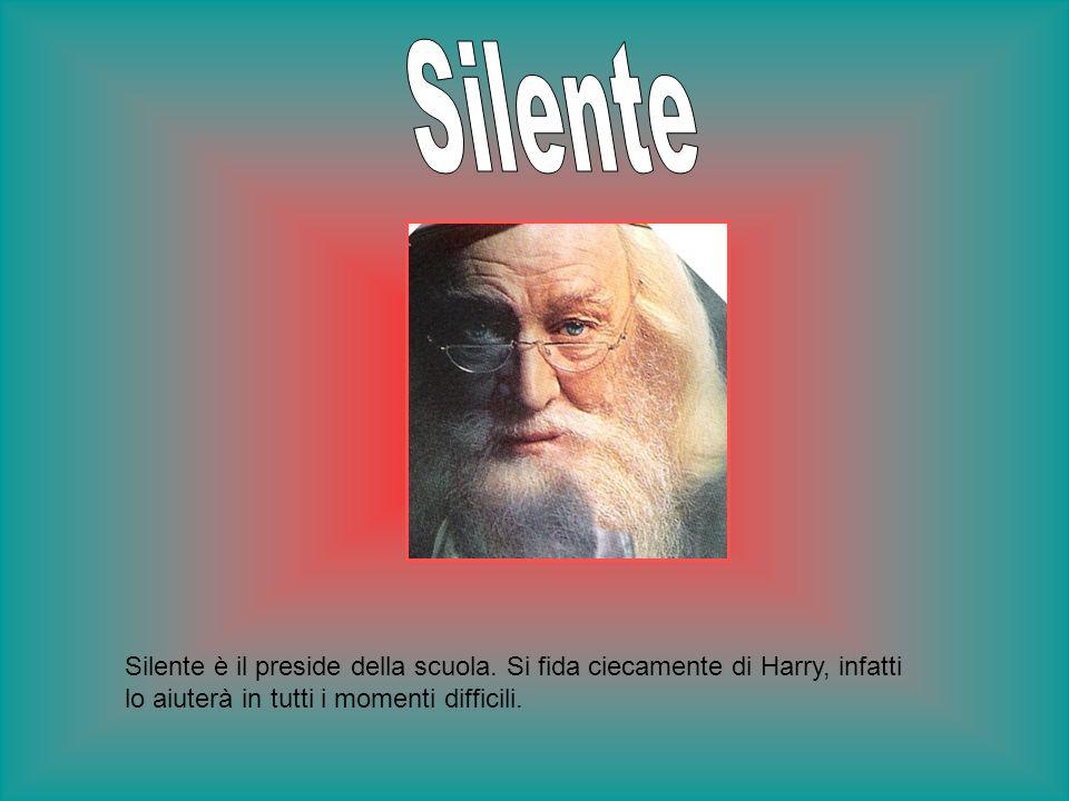 Silente è il preside della scuola. Si fida ciecamente di Harry, infatti lo aiuterà in tutti i momenti difficili.