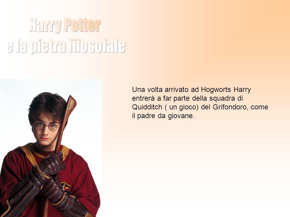 Una volta arrivato ad Hogworts Harry entrerà a far parte della squadra di Quidditch ( un gioco) del Grifondoro, come il padre da giovane.