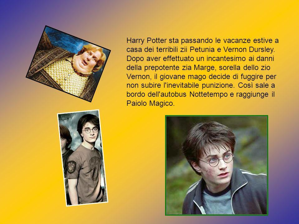 Harry Potter sta passando le vacanze estive a casa dei terribili zii Petunia e Vernon Dursley. Dopo aver effettuato un incantesimo ai danni della prep