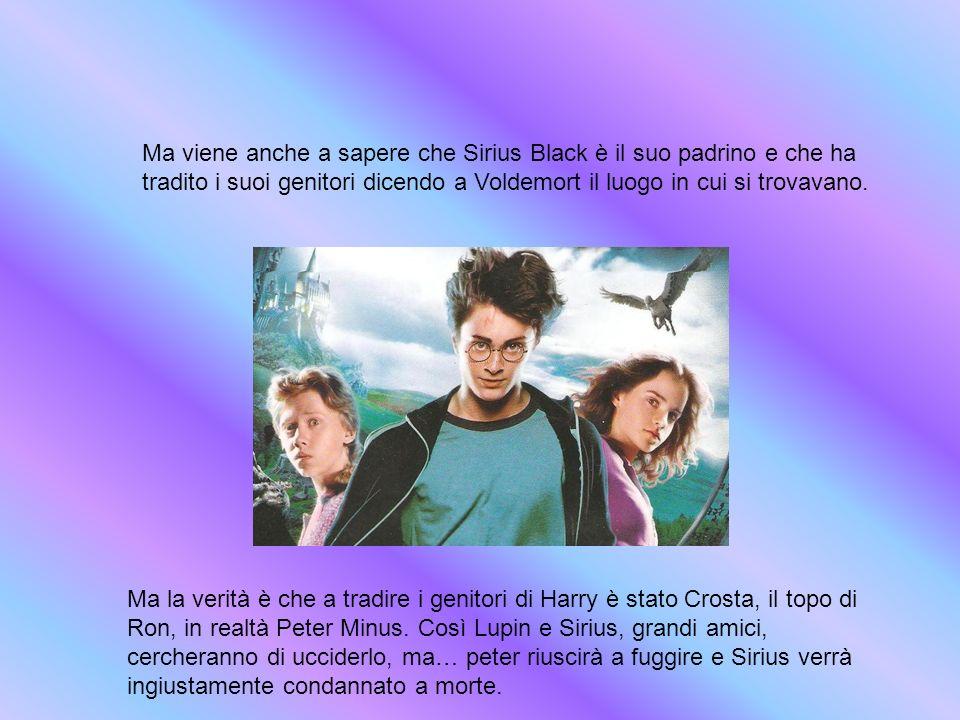 Ma viene anche a sapere che Sirius Black è il suo padrino e che ha tradito i suoi genitori dicendo a Voldemort il luogo in cui si trovavano. Ma la ver