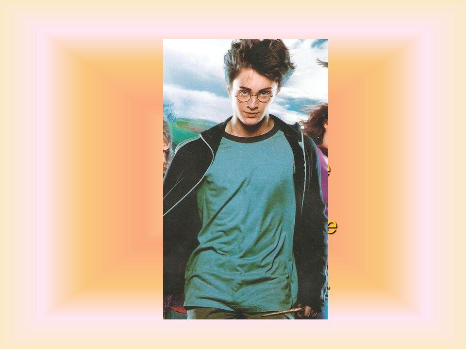 Harry però non può restare a guardare così riesce a liberare Sirius e a concludere bene anche il terzo anno scolastico.
