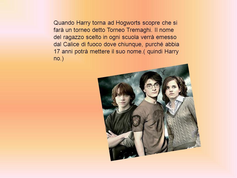 Quando Harry torna ad Hogworts scopre che si farà un torneo detto Torneo Tremaghi. Il nome del ragazzo scelto in ogni scuola verrà emesso dal Calice d