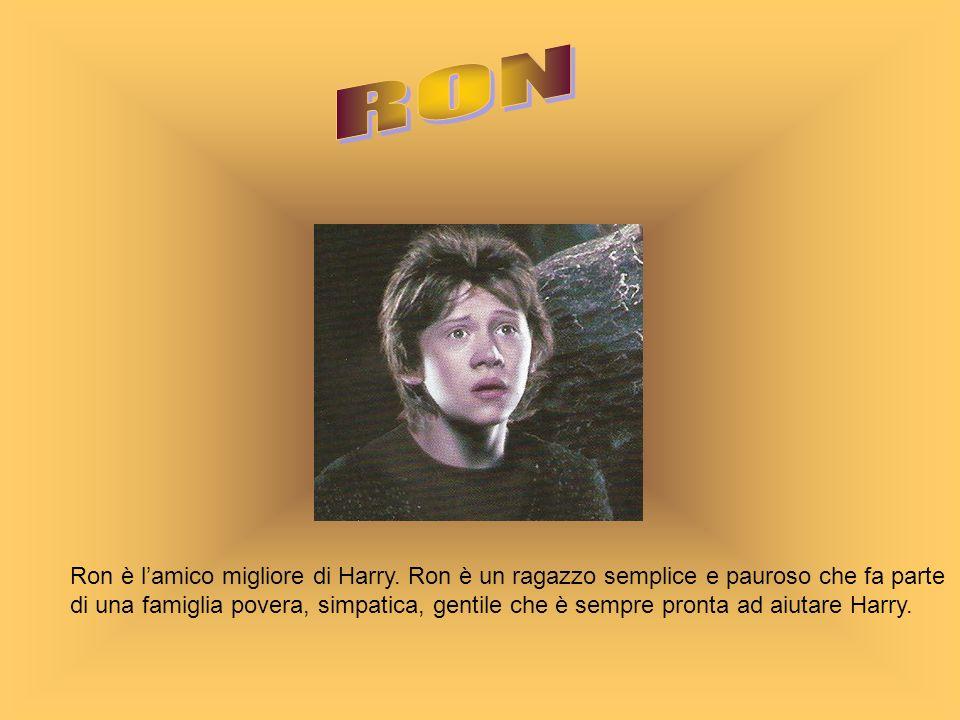Ron è lamico migliore di Harry. Ron è un ragazzo semplice e pauroso che fa parte di una famiglia povera, simpatica, gentile che è sempre pronta ad aiu