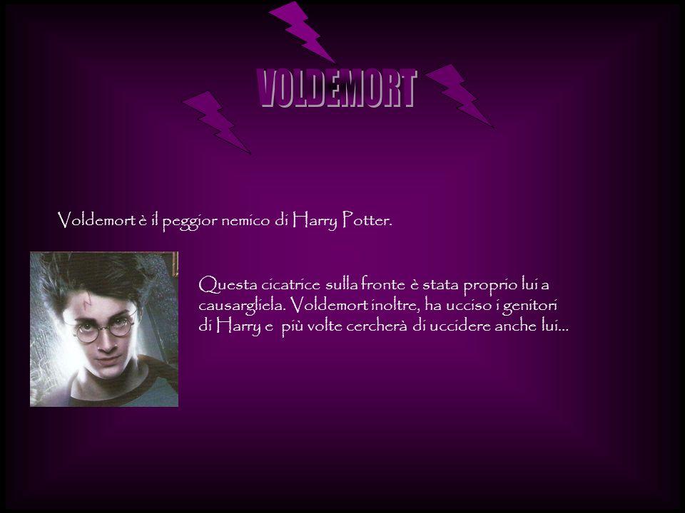 Voldemort è il peggior nemico di Harry Potter. Questa cicatrice sulla fronte è stata proprio lui a causargliela. Voldemort inoltre, ha ucciso i genito