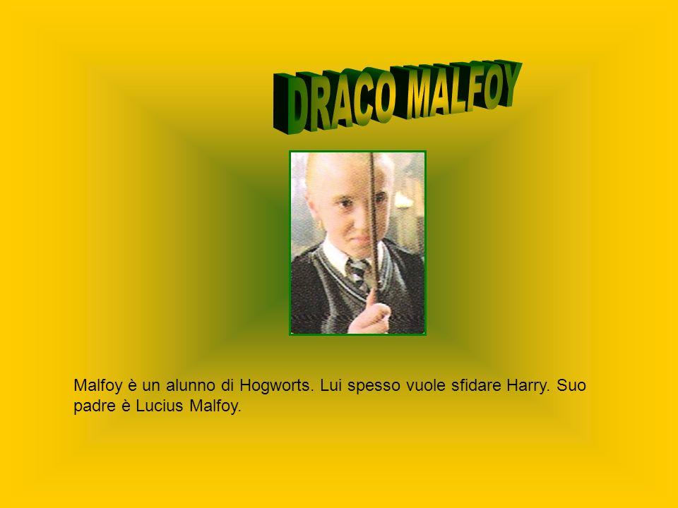 Malfoy è un alunno di Hogworts. Lui spesso vuole sfidare Harry. Suo padre è Lucius Malfoy.