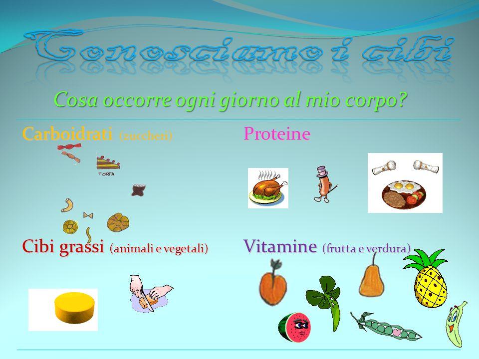 Cosa occorre ogni giorno al mio corpo? Carboidrati (zuccheri) Proteine Cibi grassi (animali e vegetali) Vitamine (frutta e verdura)