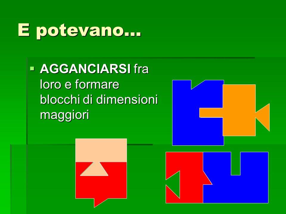 E potevano… AGGANCIARSI fra loro e formare blocchi di dimensioni maggiori AGGANCIARSI fra loro e formare blocchi di dimensioni maggiori