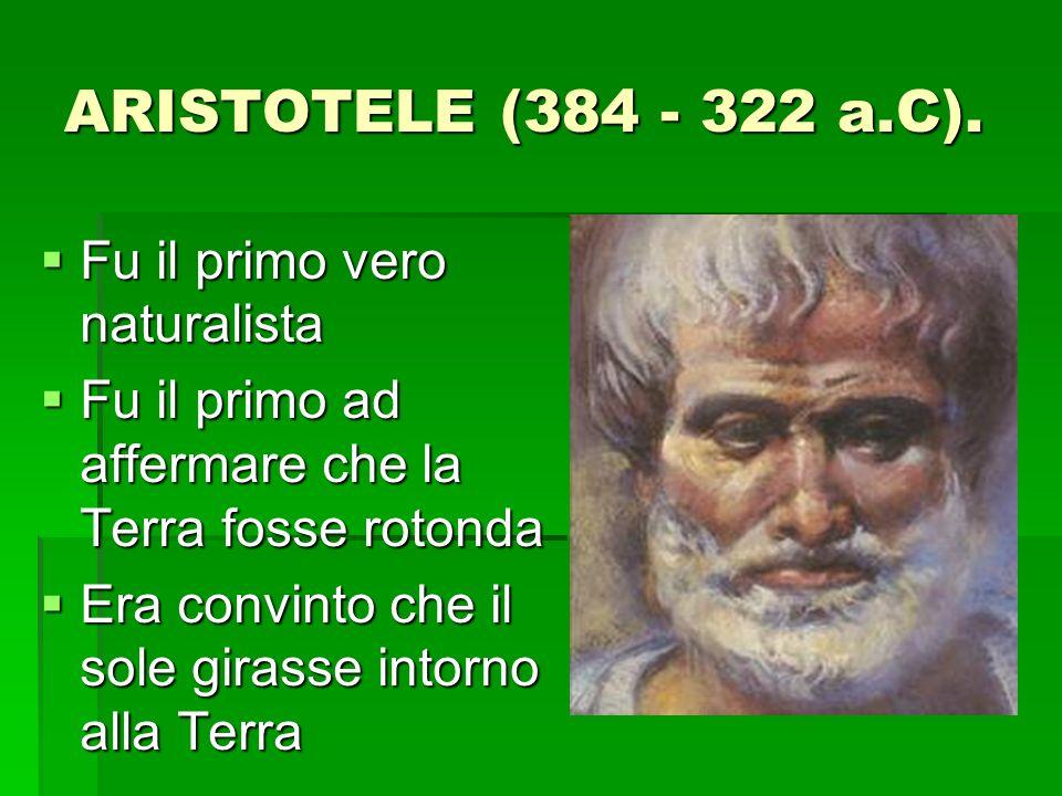 ARISTOTELE (384 - 322 a.C).