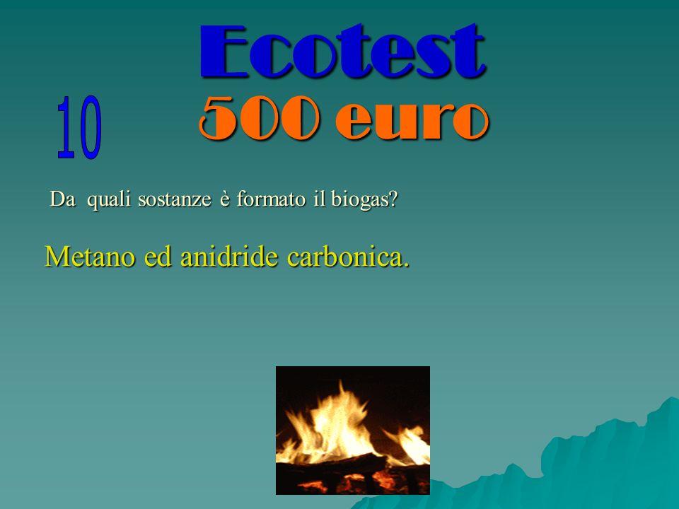 Da quali sostanze è formato il biogas? Metano ed anidride carbonica. Ecotest
