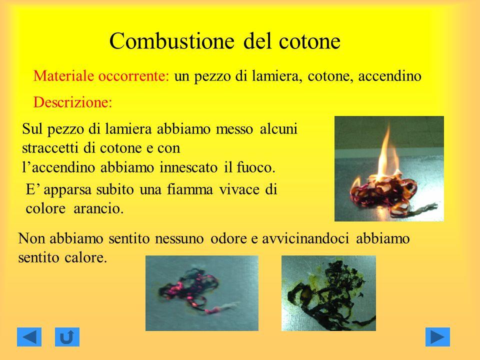 Combustione del cotone Materiale occorrente: un pezzo di lamiera, cotone, accendino Sul pezzo di lamiera abbiamo messo alcuni straccetti di cotone e c