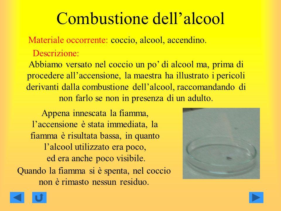 Combustione dellalcool Materiale occorrente: coccio, alcool, accendino.