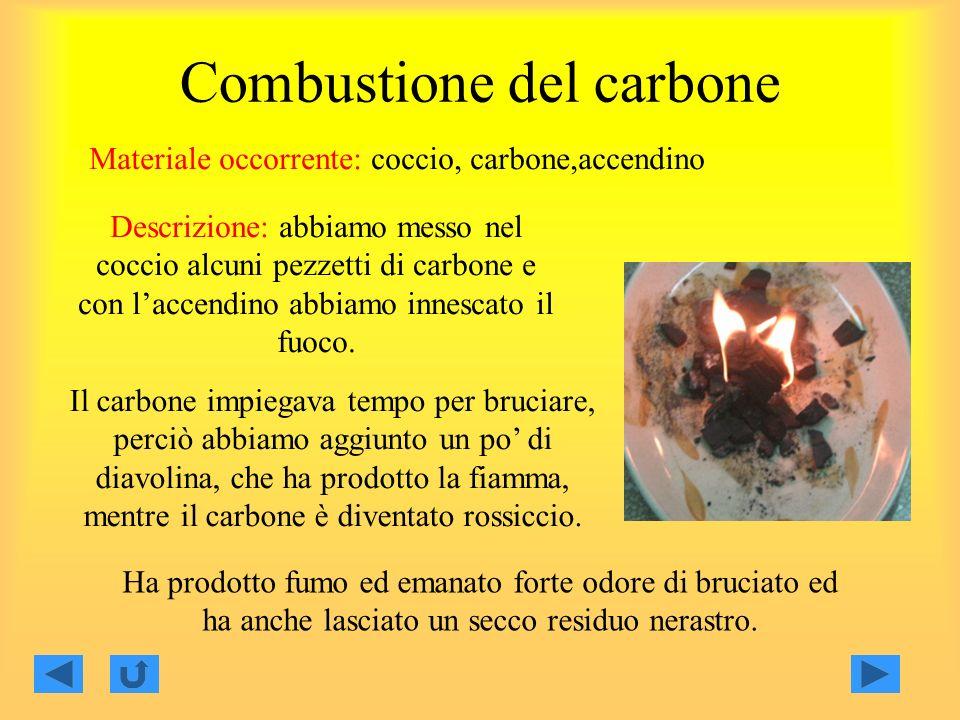 Combustione del carbone Materiale occorrente: coccio, carbone,accendino Descrizione: abbiamo messo nel coccio alcuni pezzetti di carbone e con laccendino abbiamo innescato il fuoco.